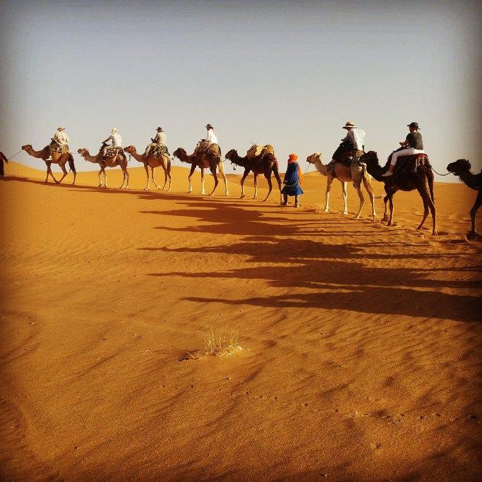 randonnee chameliere dans les desert du merzouga du voyage au maroc
