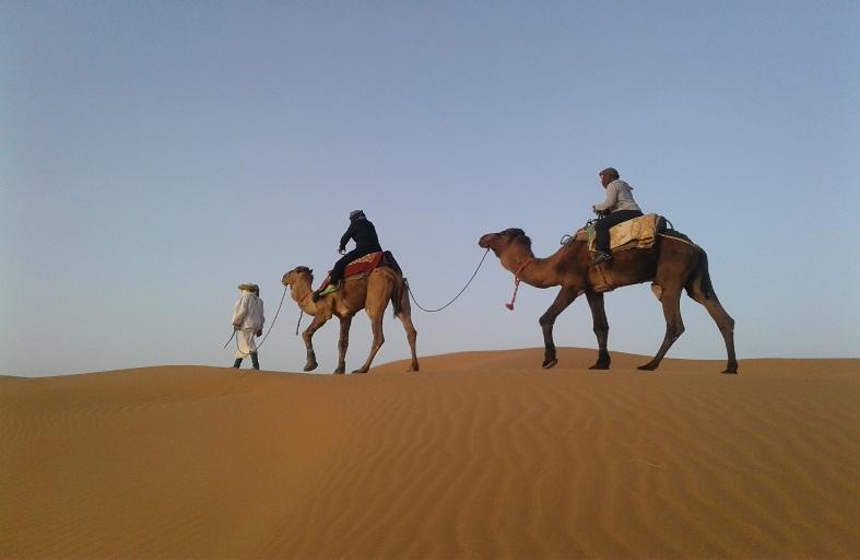 balade avec dromadere dans le desert du voyage au maroc