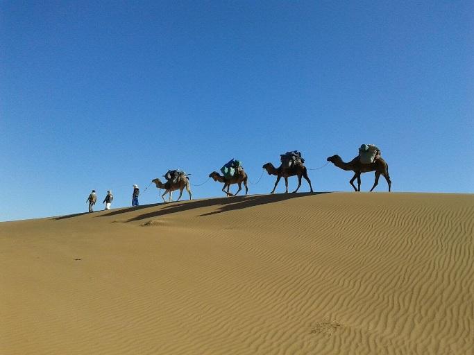 caravane dans le desert du voyage au marco