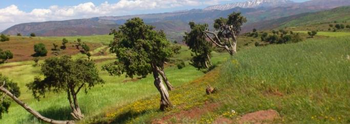 maroc-atlas-voyage-traversee-nord-sud-vallee-heureuse