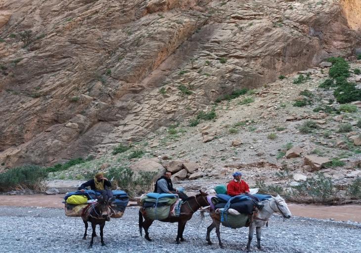 village achaabou dans la vallee des roses du voyage au maroc