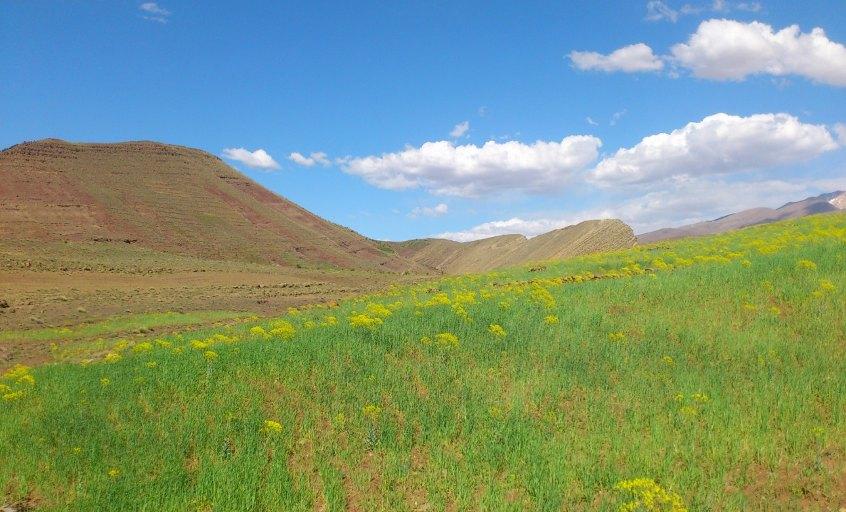village zaouit olamzi dans la vallee heureuse du voyage au maroc